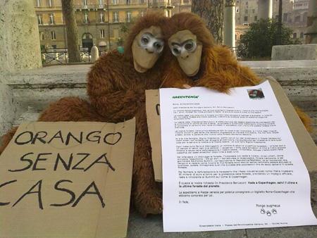 oranghi a piazza Venezia per Greenpeace